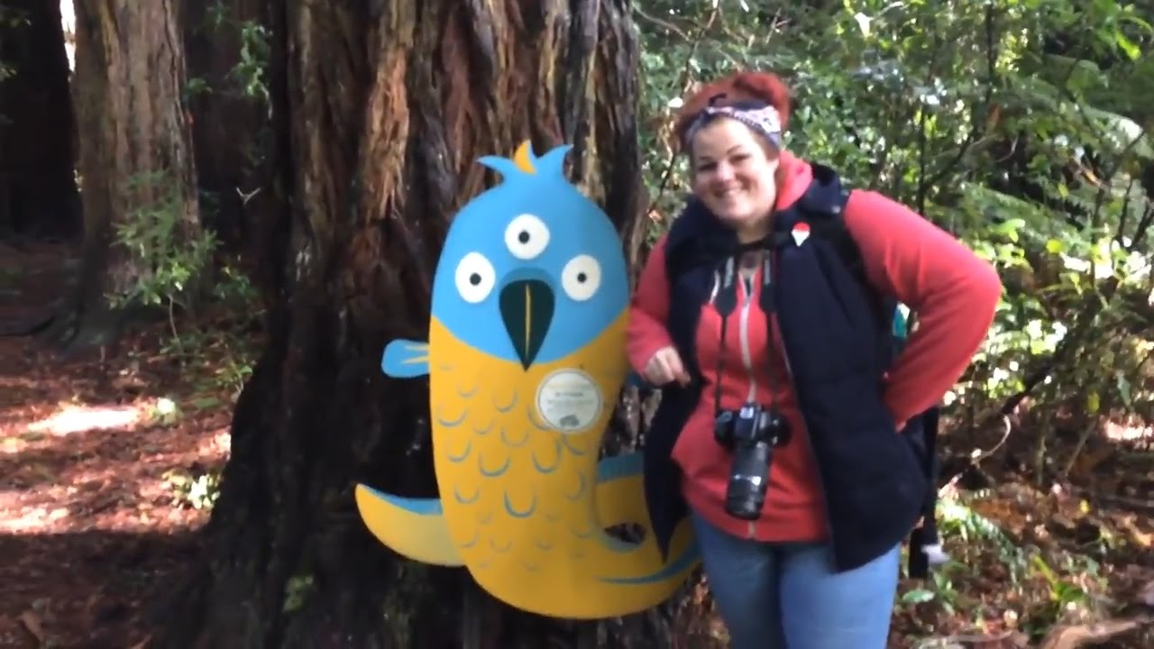 White Kiwis and Huge Bloody Parrots   Vlog