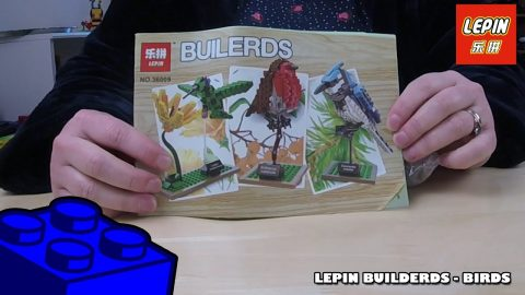 Bootlego: Lepin 36009 Builerds Birds - Timelapse | Adults Like Toys Too