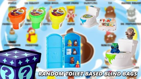 Random Toilet Based Blind Bags