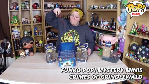 Crimes of Grindlewald Mystery Mini & Rock Candy Haul!